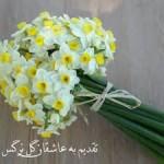 حسین حبیبی زاد