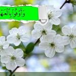 زیبا ترین احادیث در مورد وفاي به عهد