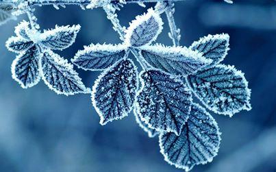 اخلاق خوب مثل برف شدن آب است+تصویر