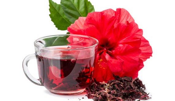 Hibiscus-Tea-1