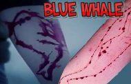 خطرات بازی نهنگ آبی
